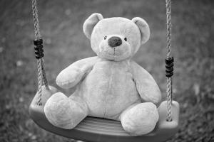 teddy-837564_1920 (2)