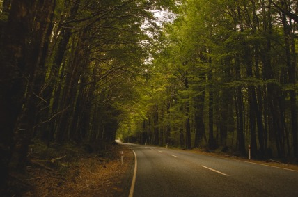 country-road-1149161_1920