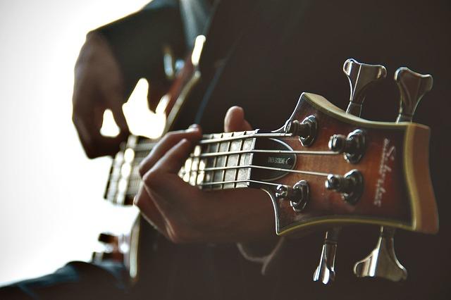 guitarist-1031087_640