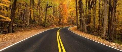 rural-road-981757_1280