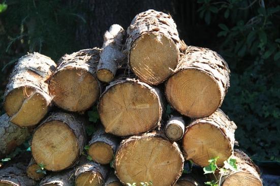 wood-1573706_640