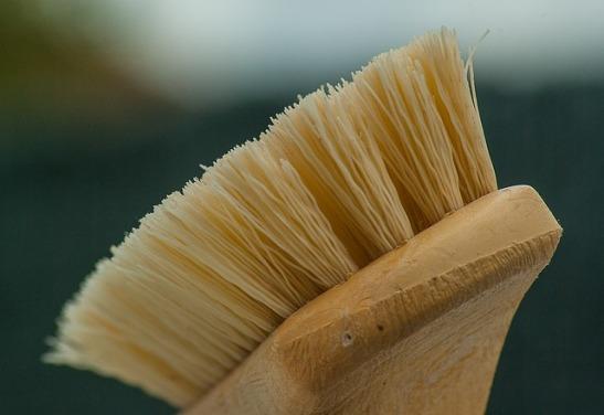 brush-1324466_640