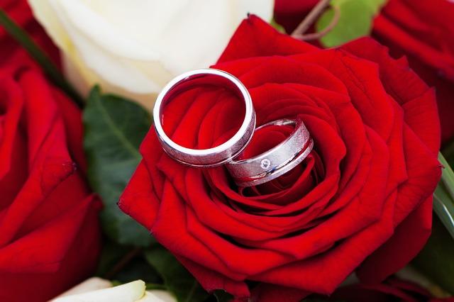 rose-257898_640
