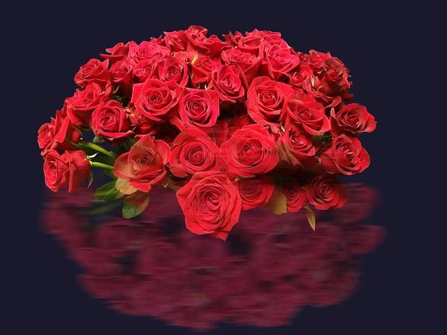 roses-2044273_640