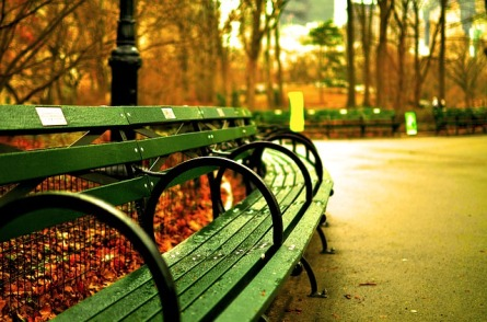 central-park-535645_640
