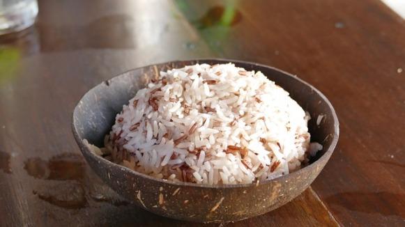 rice-2371061_640
