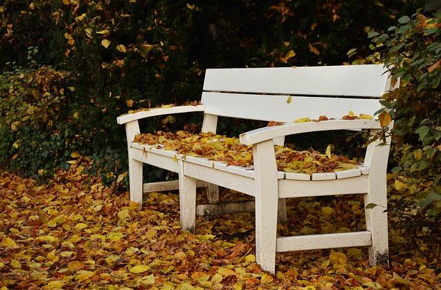 park-bench-1794181_640