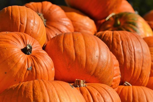 pumpkin-2752071_640