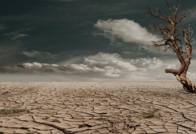 desert-279862_640.jpg