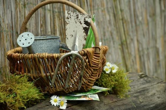 garden-gardening-1290908_640