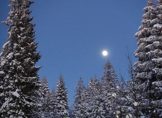 winter-1291480_640