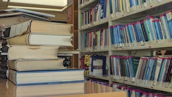 bookcase-3299618_640