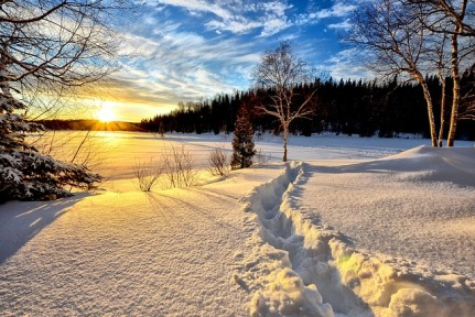 winter-landscape-636634_640