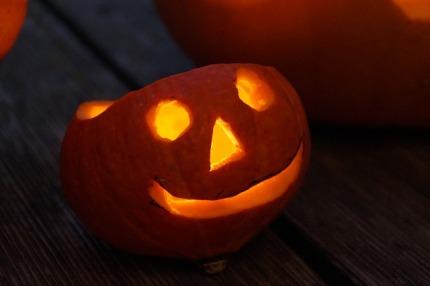 pumpkin-504268_640