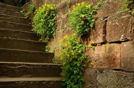 stairs-1404722_640.jpg