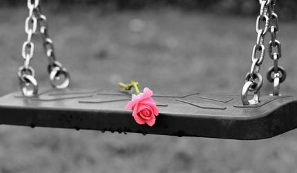 pink-rose-on-empty-swing-3656894_640.jpg