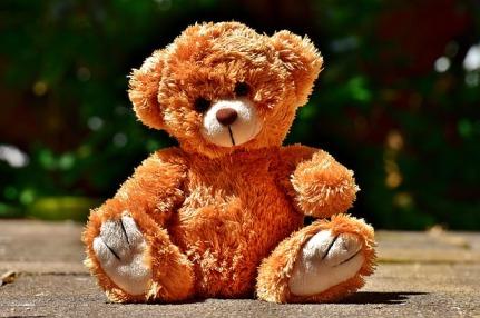 teddy-2468467_640.jpg