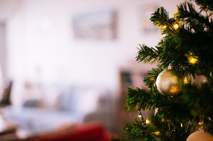shallow-focus-photography-of-christmas-tree-775485.jpg