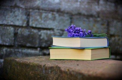 books-2420232_640-2