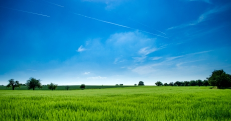 agriculture-clouds-countryside-cropland-440731